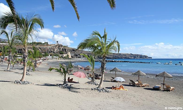 Playa San Juan palms